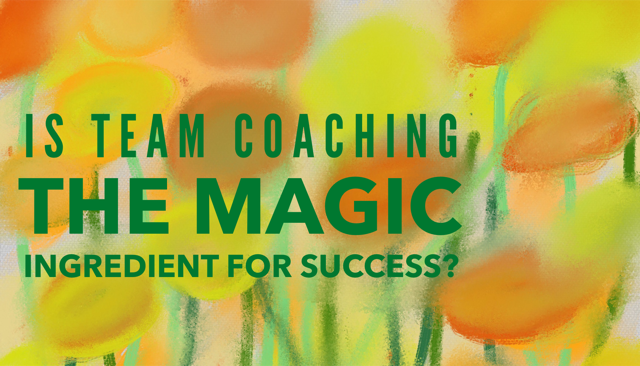 Is team coaching the MAGIC ingredient to success?